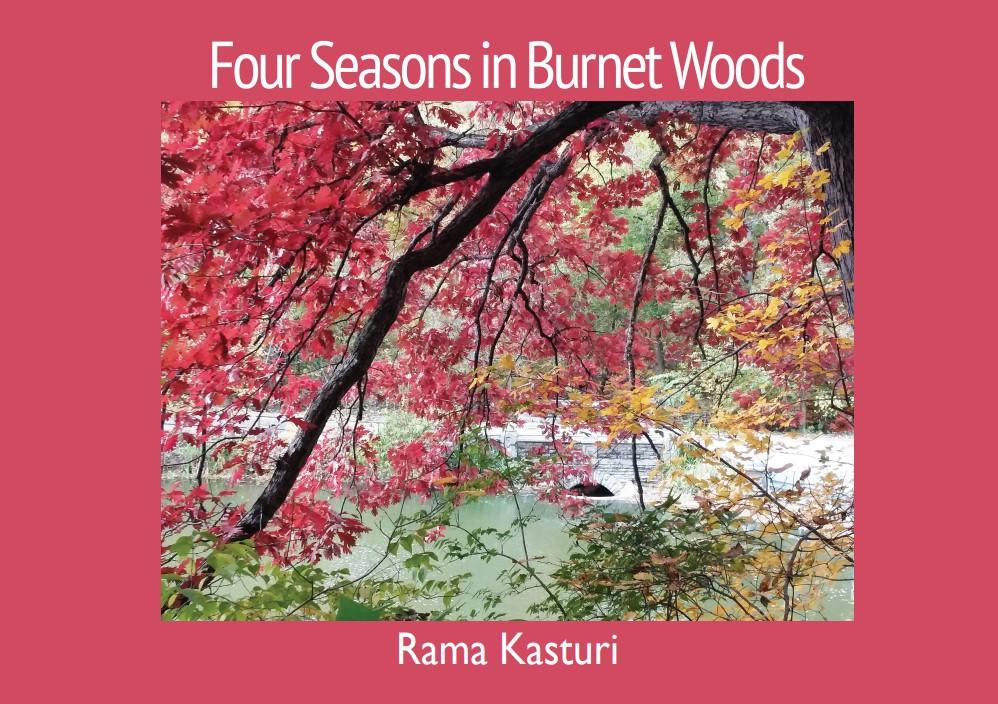Four Seasons in Burnet Woods book cover
