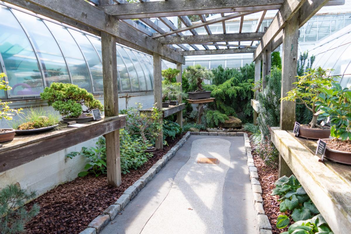 Gale Garden at Krohn