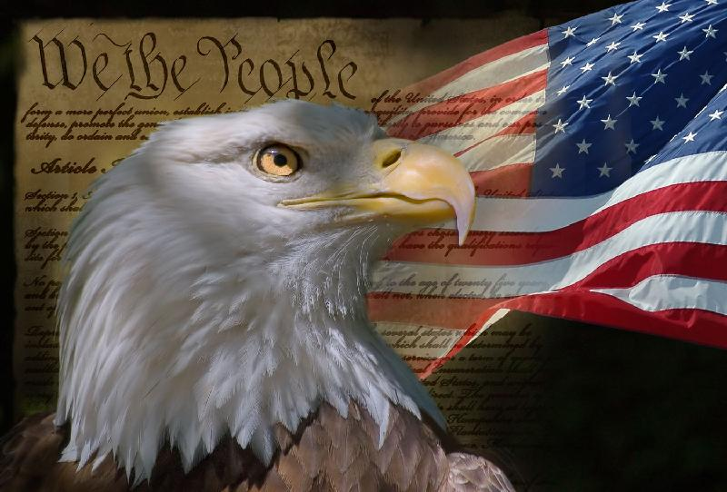 Constitution Day Eagle