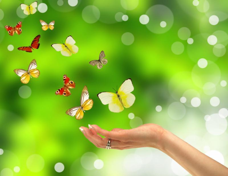 woman_hand_butterflies.jpg