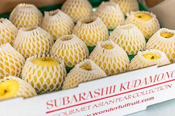 Asaju Asian Pear