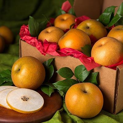 Fruit_gift_ideas