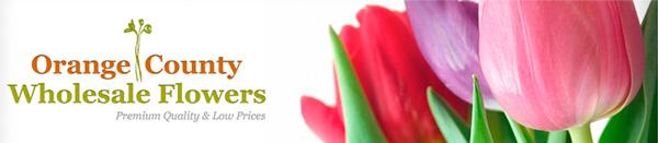 Orange County Wholesale Flowers Header