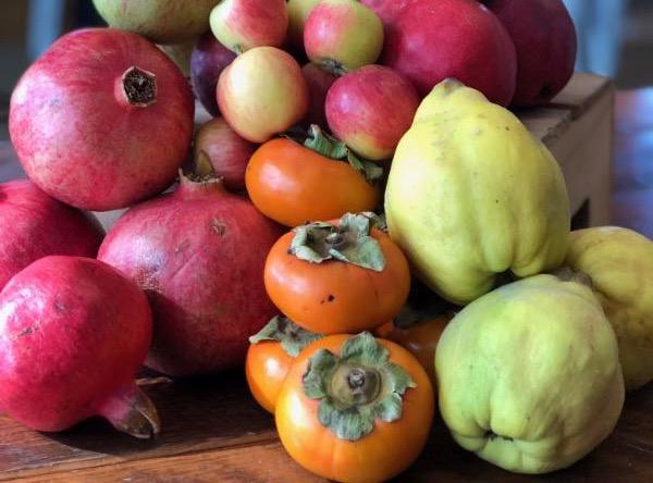Hudson fall produce