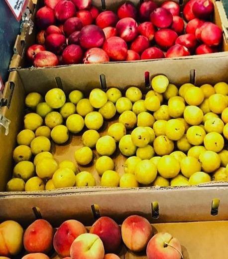 Hudson fruit