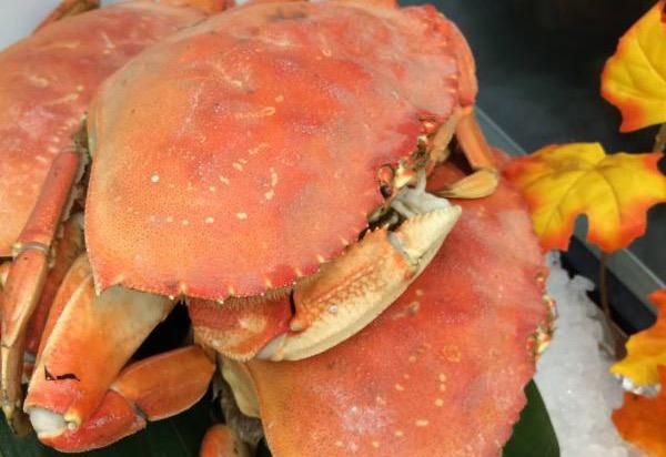 Eiko's crab