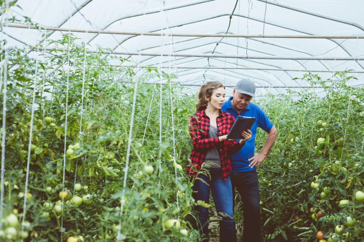 man and woman growing food