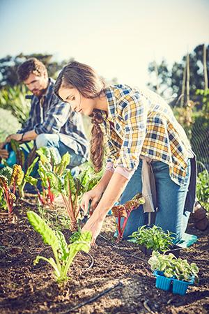 Planting - Winning at Wellness March 2020
