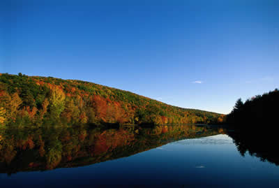 tranquil-lake.jpg