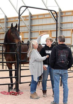 Equine Gestalt Practitioners Program