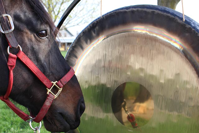 Horse and Gong