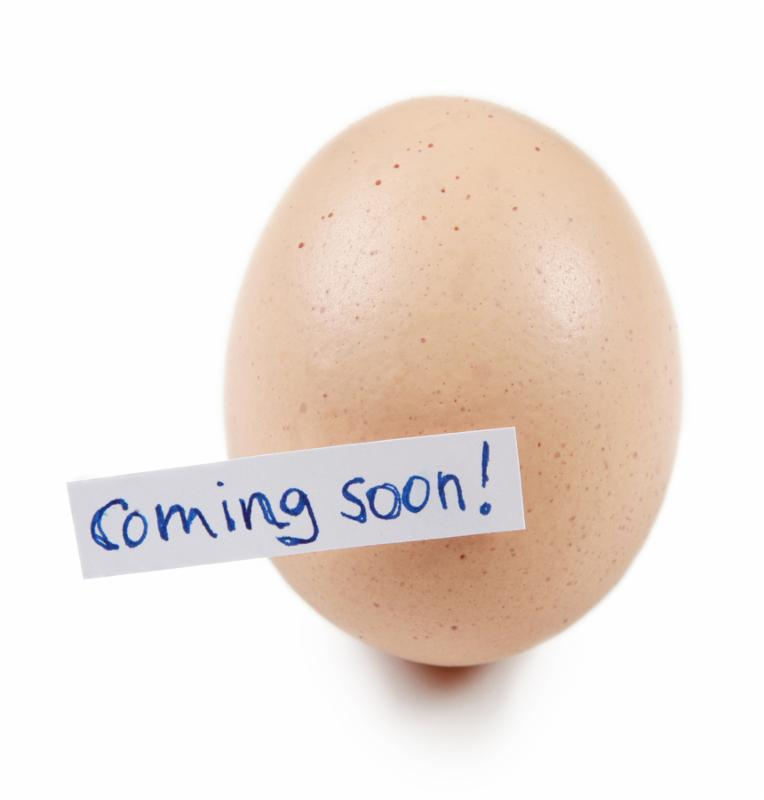 An egg which is symbolic for upcoming novelty. Can be used to illustrate anything new.