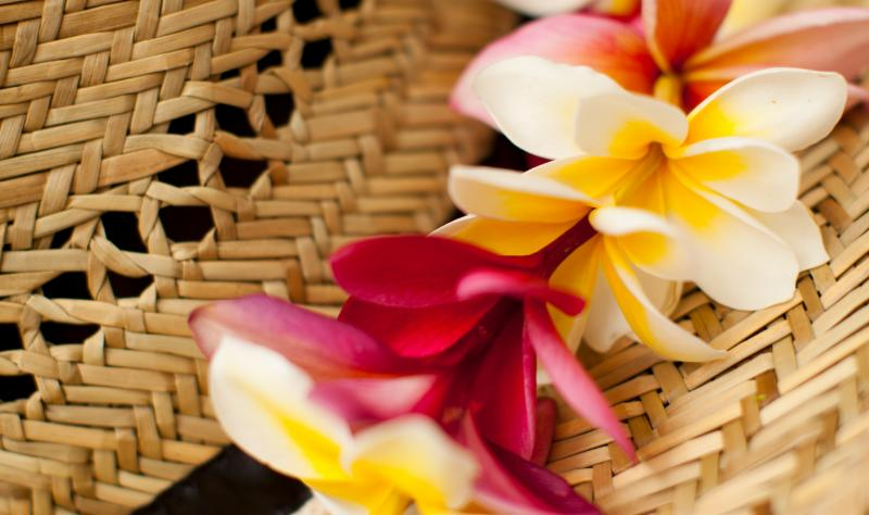 kamaaina special tourism in hawaii essay Discover all the great savings being offered at plantation hale suites when you book these special rates may not be combined with are you a hawaii.