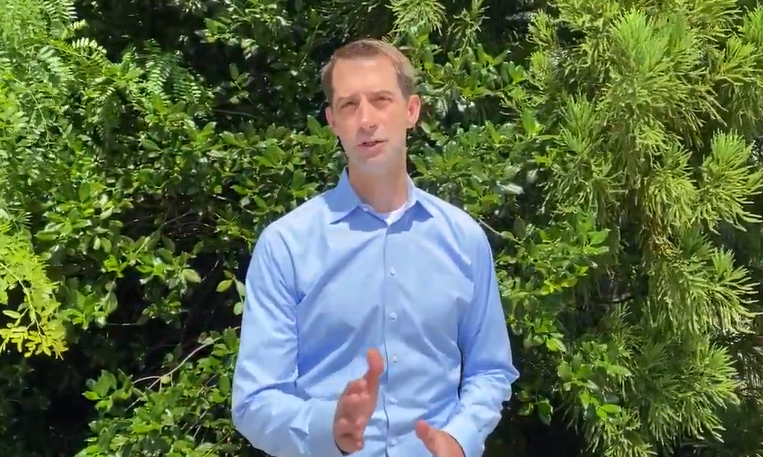 Endorsement Video: Tom Cotton endorses Kelly Loeffler