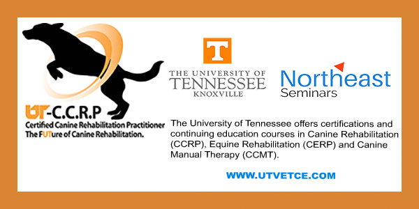 Northeast Seminars and University of Tennessee banner ad