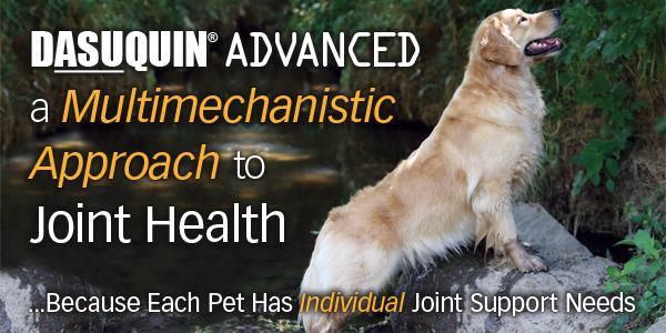 Dasuquin Advanced ad from Nutramax