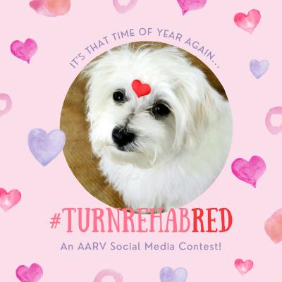 TurnRehabRed social media contest