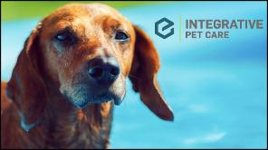 Integrative Pet Care image