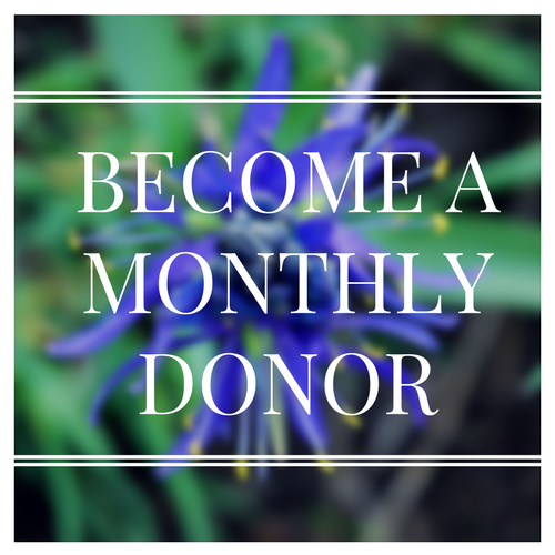 Monthly donors are key to our success