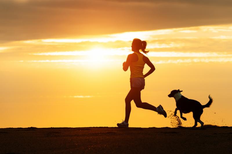 woman_dog_running_on_beach.jpg