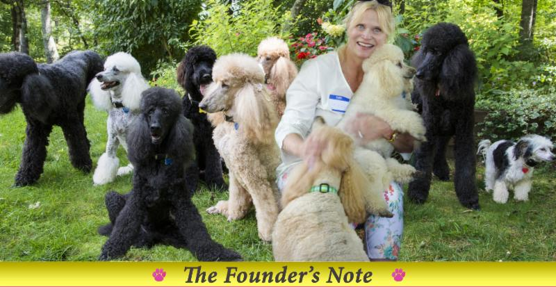 Florida Poodle Rescue News for May
