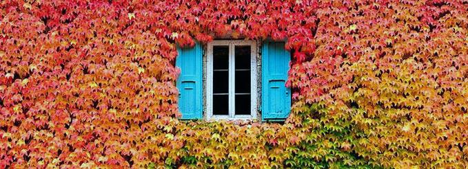 Autumn home swaps