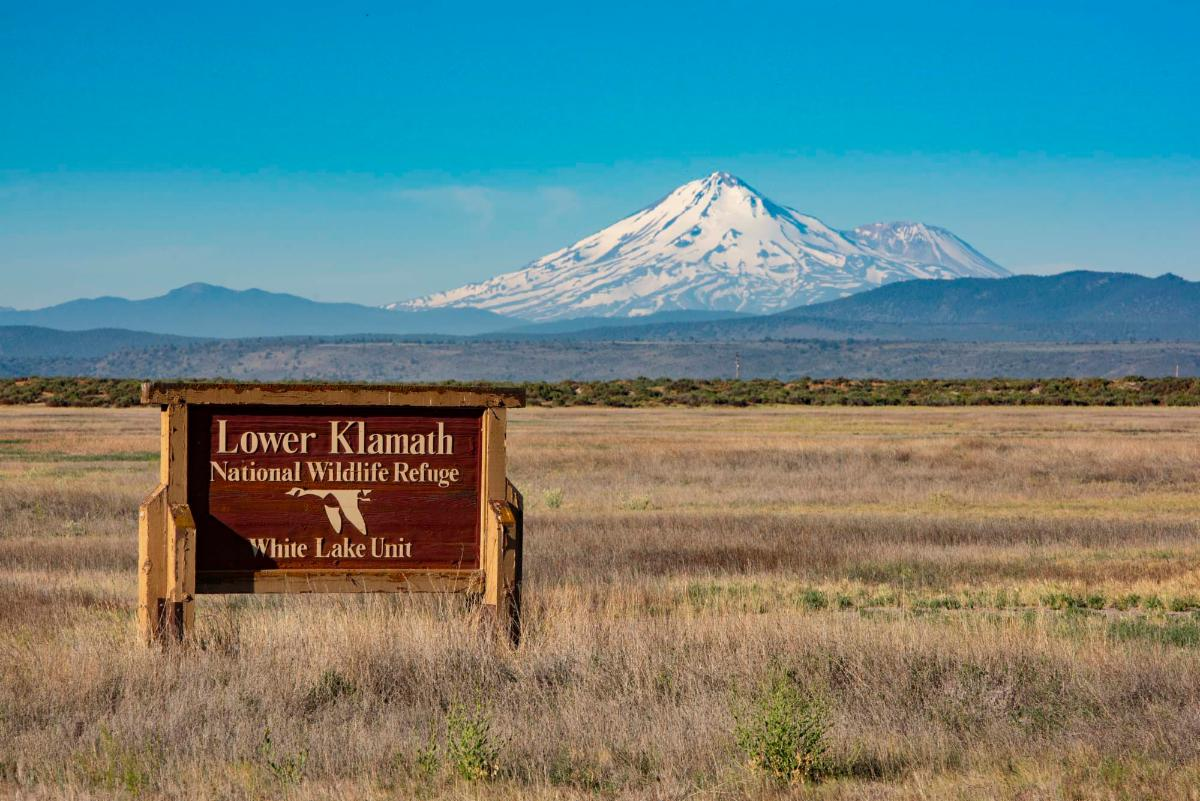 Photo of Lower Klamath NWR sign with Mount Shasta in the background