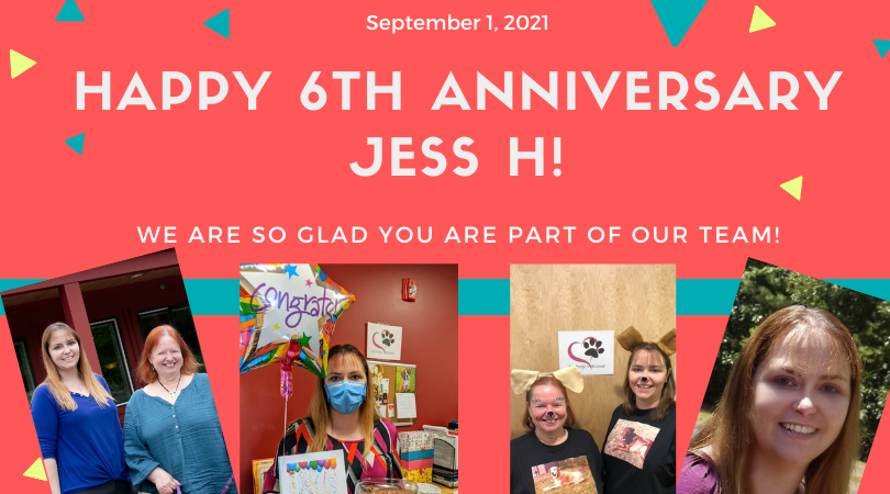 _Happy 6th anniversary Jess H_.png