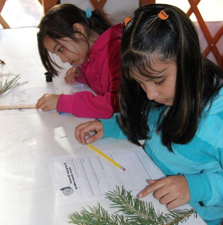 Yurt Science Program