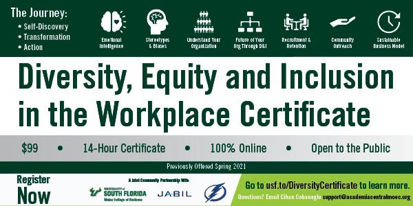 600x300_web_Diversity Certificate.jpg
