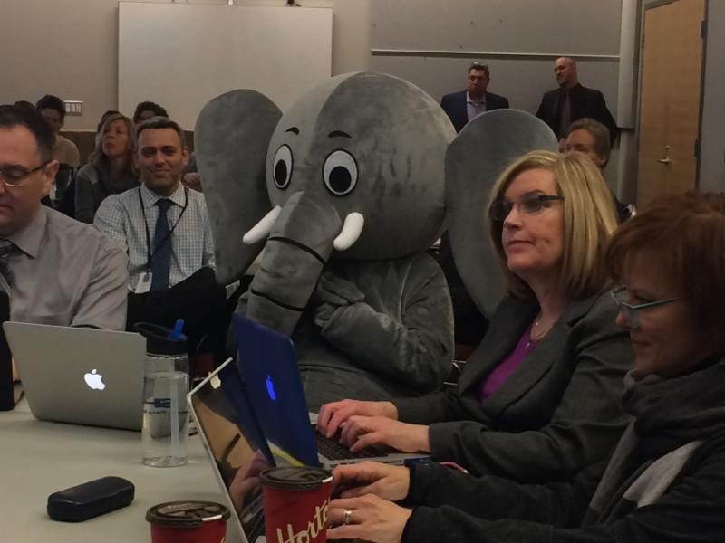 Elephant sitting down beside staff members in a room