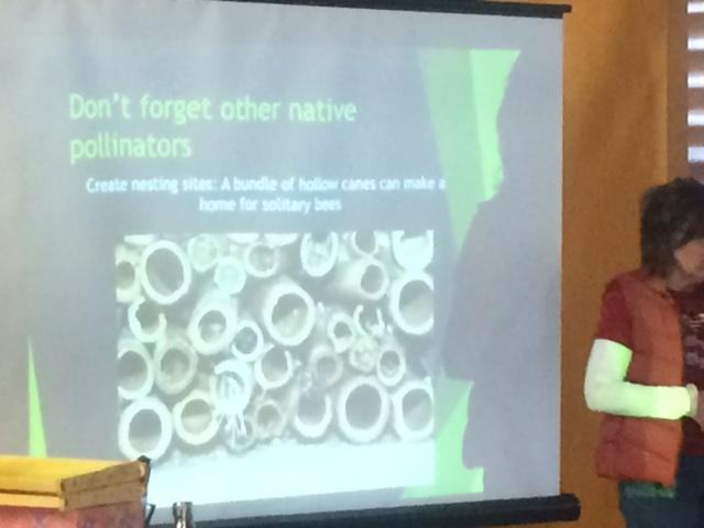 PowerPoint slide showing nesting tubes for bees