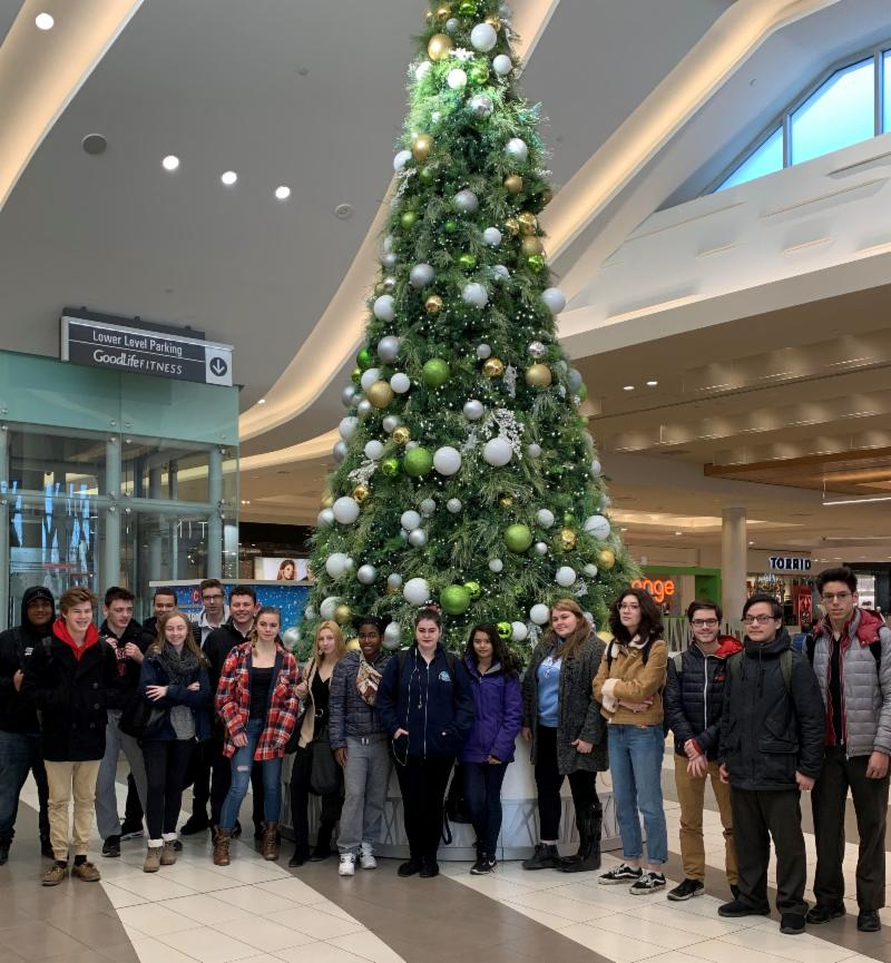 Group of male and female students standing in front of huge Christmas tree in a mall