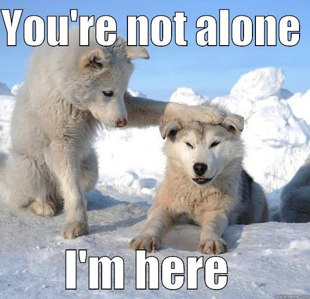two dogs in the winter time with the left dog holding its paw on the head of the right dog saying youre not alone_ im here.