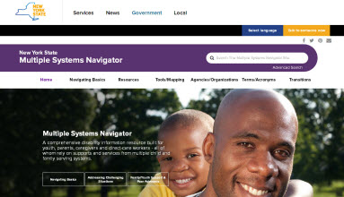 NYS Multiple System Navigator Website screenshot