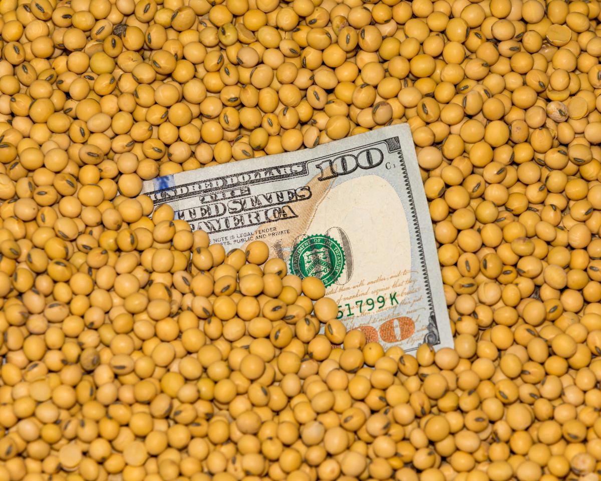 $100 bill in soybeans