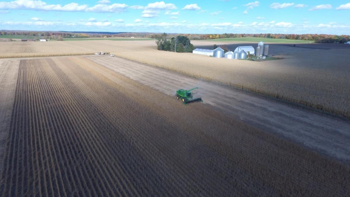 drone shot of soybean harvest