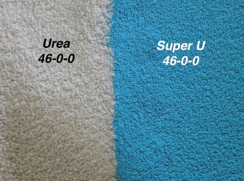 urea vs. Super U blue