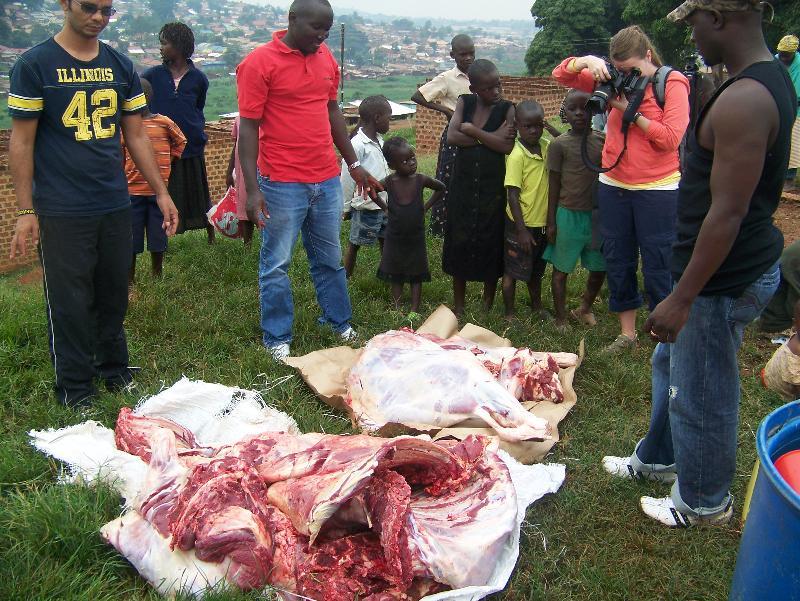Meat 2011 feeding jan