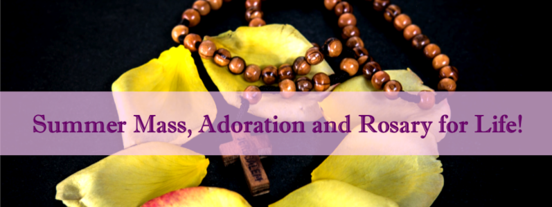 Summer Mass_ Adoration and Rosary for Life_