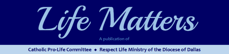 Life Matters - A Publication of Catholic Pro-Life Committee