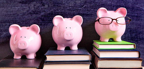 Photo of Piggy Banks and Books