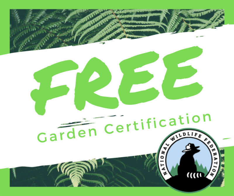 Free Garden Certifications for Sunrise residents to certify their yard through National Wildlife Federation