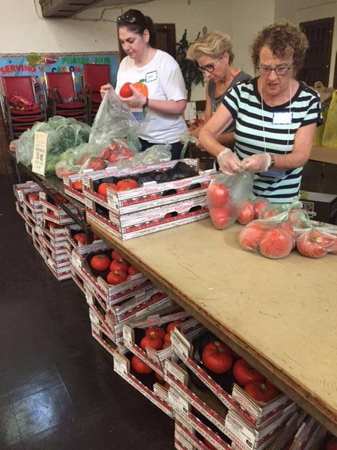 Packing Farmers Market tomatoe