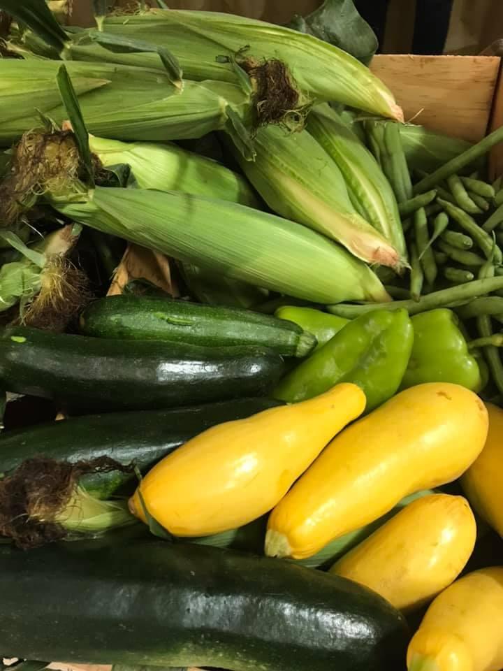 Corn and squash