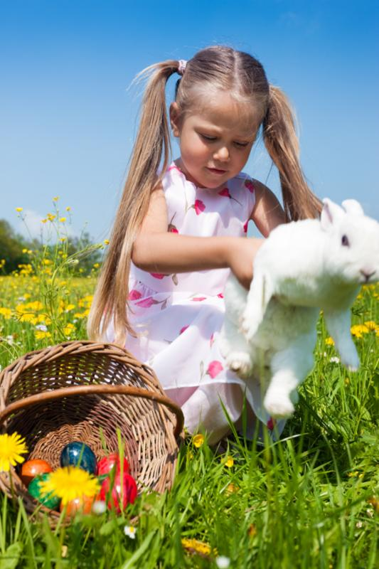child_with_white_bunny.jpg