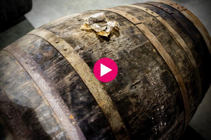 Blackwater Barrel kickstarter campaign video still image