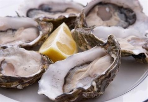 Oysters in Shell