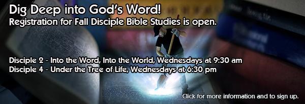 Cisciple Bible Study