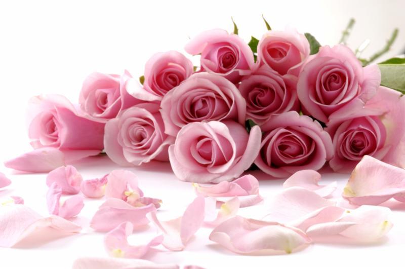 pink_roses_bouquet.jpg